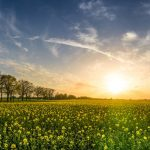 6 Ways To Spring Clean Your Business Image
